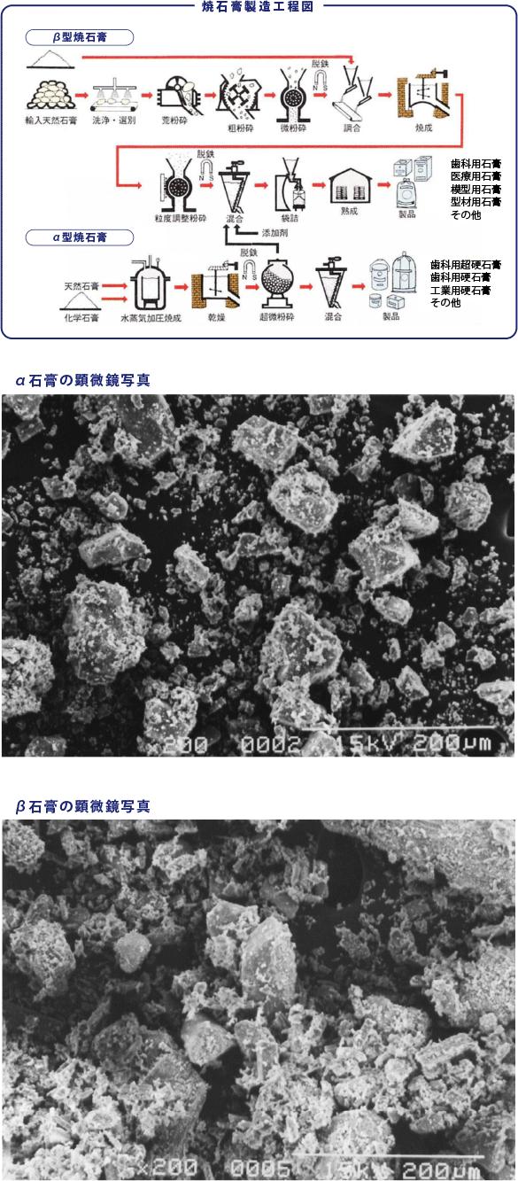 石膏の製造工程(α石膏とβ石膏)